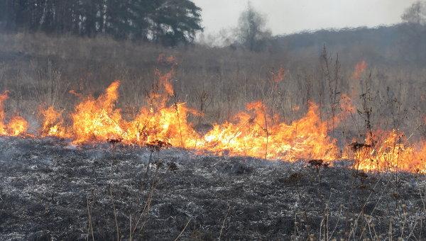 Из-за выжигания травы загорелась деревянная постройка